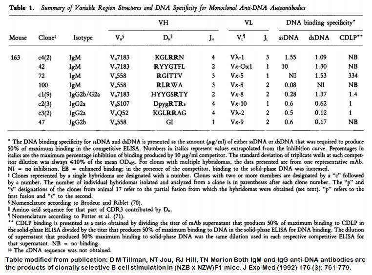 Image thumbnail for Anti-DNA [m163-72] monoclonal antibody
