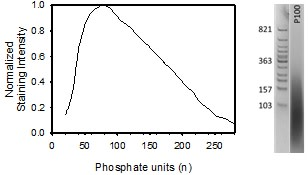 Image thumbnail for Biotinylated medium chain polyphosphate small molecule (tool compound)