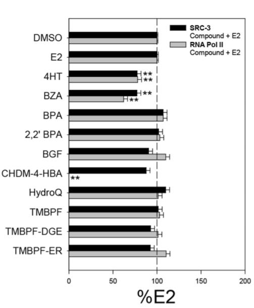 Image thumbnail for Anti-Phospho RNA polII (Ser5) [CTD 8A7]