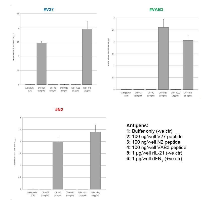 Image thumbnail for Anti-IFN-γ [V27P4G9*F10]