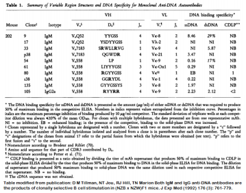 Image for Anti-DNA [m202-p38] monoclonal antibody