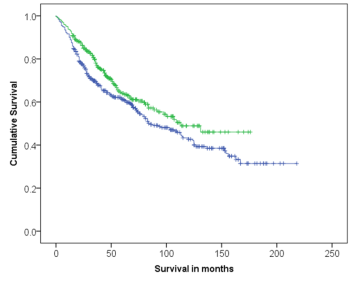 Survival curve comparing patients outcome categorised by expression of ELOVL3 using Anti-ELOVL3 [V61 P2B3*D10]. Strong expression of ELOVL3 was associated with improved patients' outcome (p=0.022).