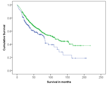 Survival curve comparing patients outcome categorised by expression of ELOVL5 using Anti-ELOVL5 [Z88]. Strong expression of ELOVL5 was associated with improved patients' outcome (p=0.006).