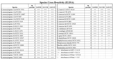 ELISA detection showing the sensitivity and specificity of anti-Listeria monocytogenes antigen 2 [2:13 C5].