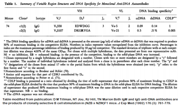 Image for Anti-DNA [m74-c2] monoclonal antibody