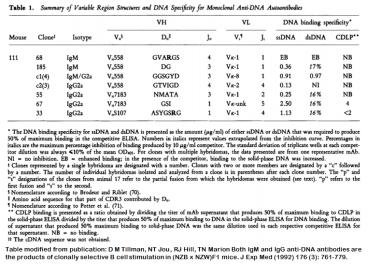Image for Anti-DNA [m111-185] monoclonal antibody