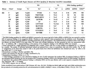 Image for Anti-DNA [m202-s38] monoclonal antibody