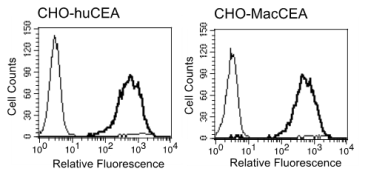 Flow cytometry histogram: 