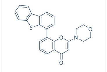Image for DNA-PK inhibitor NU7441 Small Molecule (Tool Compound)