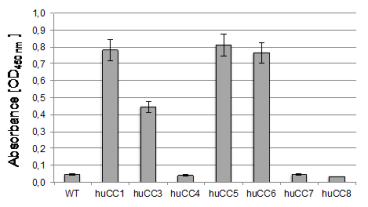 Indirect Enzyme-Linked Immunosorbent Assay (ELISA) Indicated antigens were coated onto wells. After blocking with 2% BSA/PBS mAb P2-4H (5 µg/ml) was incubated with the antigens. After washing HRP-coupled goat anti mouse antibody was incubated and visualized by TMB detection.