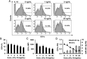 Adapted from Wen Q, Zhou C, Xiong W, Su J, He J, Zhang S, Du X, Liu S, Wang J, Ma L. MiR-381-3p Regulates the Antigen-Presenting Capability of Dendritic Cells and Represses Antituberculosis Cellular Immune Responses by Targeting CD1c. J Immunol. 2016 Jul 15;197(2):580-9. doi: 10.4049/jimmunol.1500481. Epub 2016 Jun 13. PMID: 27296666. Inhibition of CD1c by IL-10 involves miR-381-3p. Monocytes were treated with G4 as well as different concentrations of IL-10 for 3 d. (A–C) The surface CD1c expression was detected using immunofluorescence and flow cytometry (A). The comparison in CD1c-positive cell ratio (B) and the mean fluorescence index (MFI) of CD1c− (C) were shown. (D) The expression of CD1c mRNA and miR-381-3p was detected with qRT-PCR. Representative results of three repeated experiments were shown.