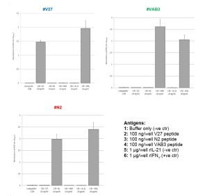 To verify the reactivity of produced mAbs against their specific peptides and the rIFN-γ an indirect-ELISA was developed. Results confirmed that mAbs recognised their specific peptides and the trout rIFN-γ but not trout rIL-21 (negative control):