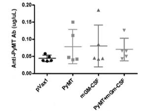 Adapted from DeVette et al. 2020. Oncoimmunology. 9(1):1685300. PMID: 32002300. Figure. ELISA for PyMT-specific antibodies in the plasma of vaccinated mice one day after the 1st booster.