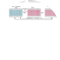 Schematic protocol for measuring the effect of stressor on XBP1-NLuc reporter expression