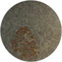 Image for Anti-Pancreatic Islet [LIV3D3]