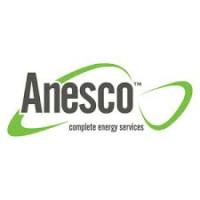 Anesco logo