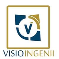 Visio Ingenii logo