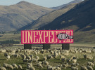 DDB Worldwide reveals new brand positioning 'Unexpected Works'