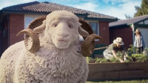 RAMS makes an 'obvious' statement in latest campaign via Saatchi & Saatchi