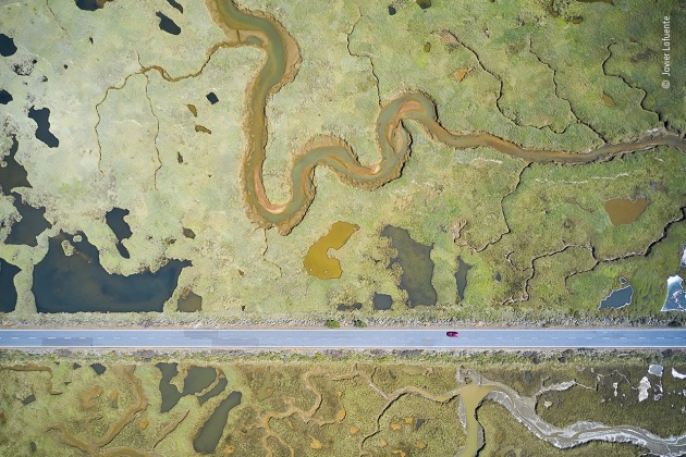 Road to ruin by Javier Lafuente, Spain, Winner, Wetlands - The Bigger Picture. Javier Lafuente (Spain) shows the stark, straight line of a road slicing through the curves of the wetland landscape. By manoeuvring his drone and inclining the camera, Javier dealt with the challenges of sunlight reflected by the water and ever-changing light conditions. He captured the pools as flat colours, varying according to the vegetation and mineral content. Dividing the wetland in two, this road was constructed in the 1980s to provide access to a beach. The tidal wetland is home to more than a hundred species of birds, with ospreys and bee-eaters among many migratory visitors. DJI Mavic 2 Pro + Hasselblad L1D-20c + 10.3mm f2.8 lens 1/500 sec at f2.8 (+0.3 e/v) ISO 100.