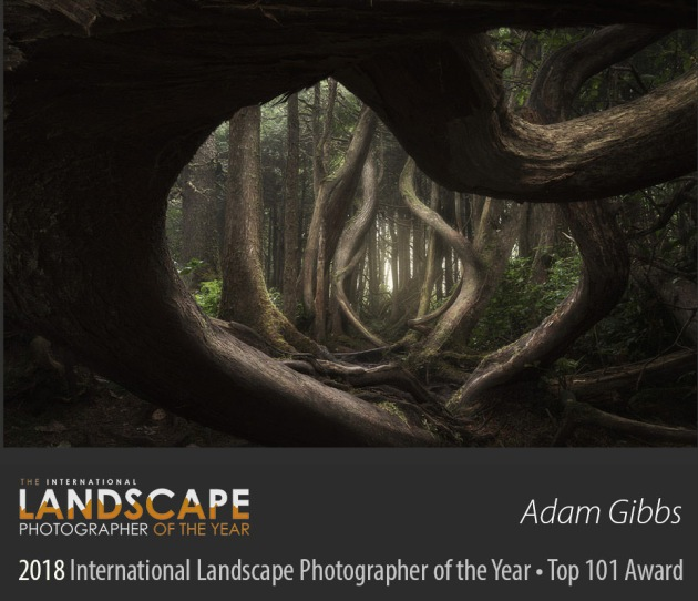 © Adam Gibbs/The International Landscape Photographer of the Year