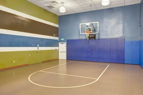 basketball court with padded walls