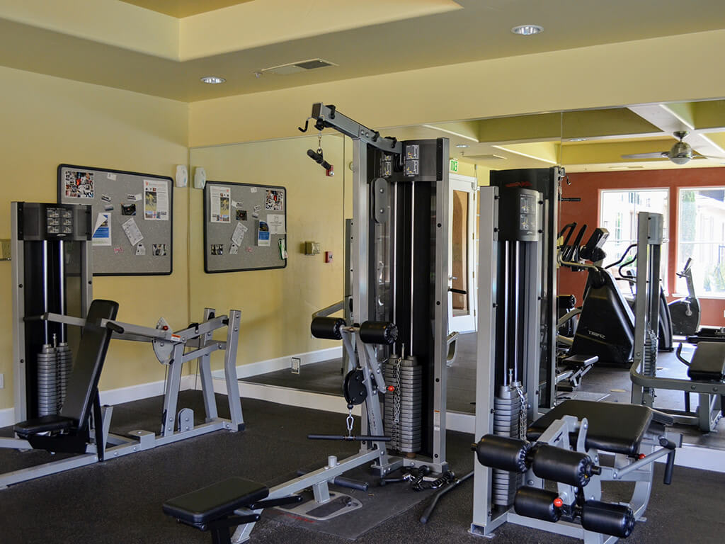 Cardio Equipment at Sterling Village Apartment Homes, California, 94590