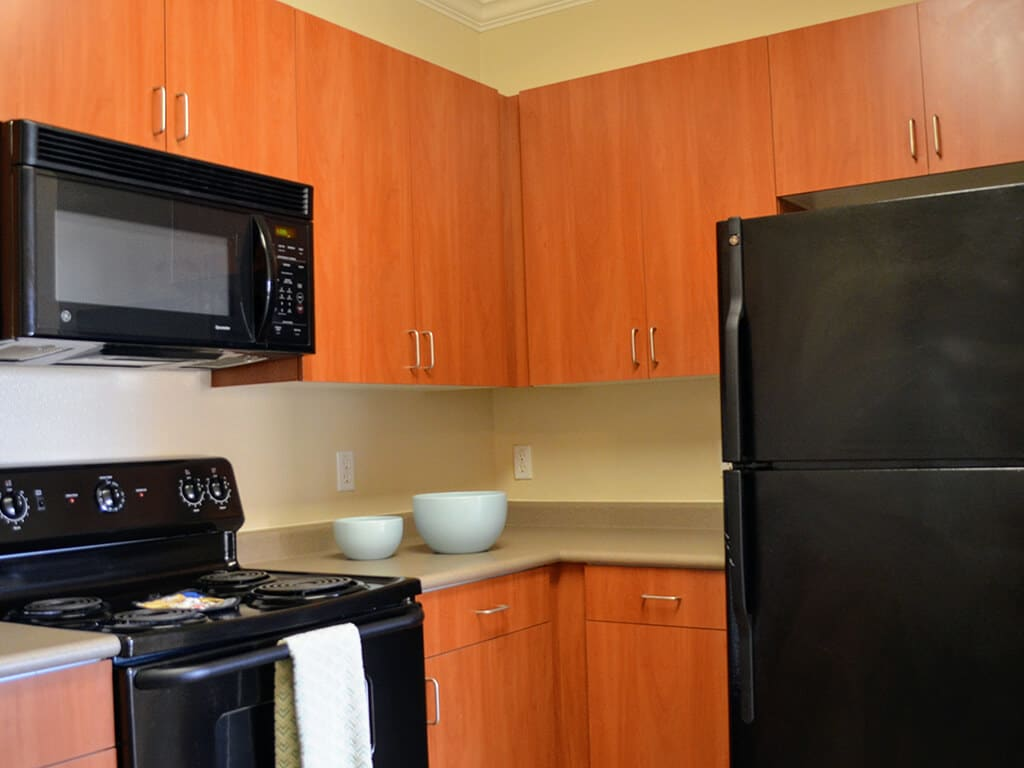 Energy-Efficient Black GE Appliances at Waterstone Apartment Homes, 1951 West Middlefield Drive, Tracy