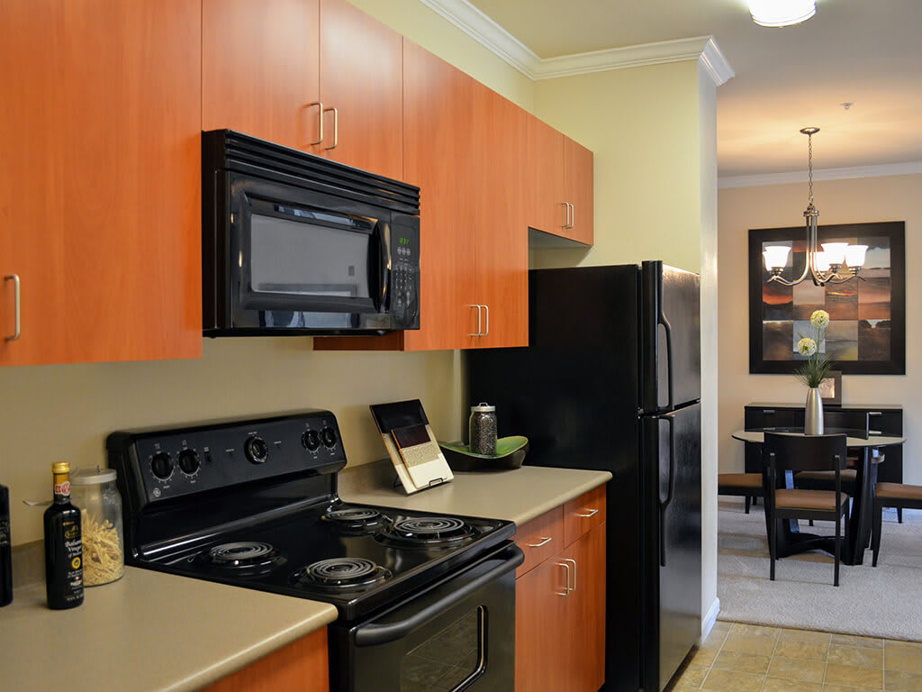 All Electric Kitchen at Waterstone Apartment Homes, Tracy, CA