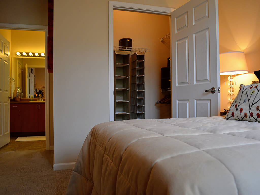 Master Bedroom with attached Bathroom and Closet at Waterstone Apartment Homes, 1951 West Middlefield Drive, Tracy