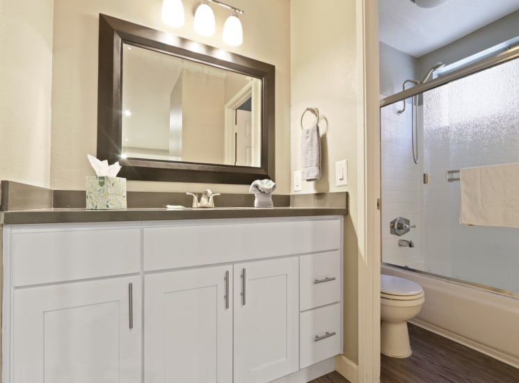 Single vanity area with gray quartz counters, track lighting, wood-style floors, bathroom on the right