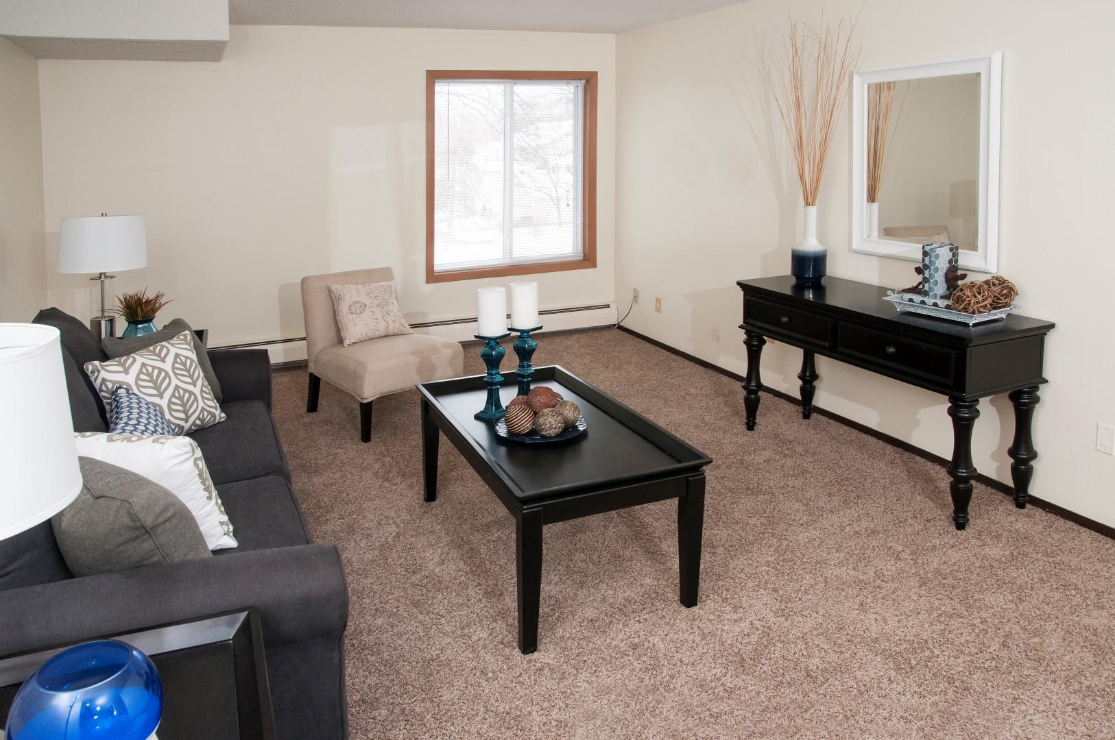 Burnsville Parkway Apartments Large Carpeted Living Room with Large Amounts of Natural Light