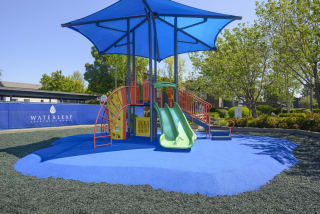 Ample and Open Children's Play Area at Waterleaf, Vista, CA