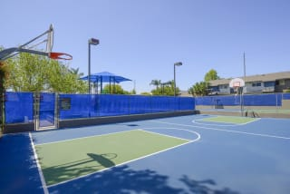 Full Size Basketball Court at Waterleaf, CA, 92083