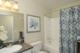 Large Soaking Tub In Master Bathroom with A Tile Surround at Waterleaf, 333 North Emerald Drive