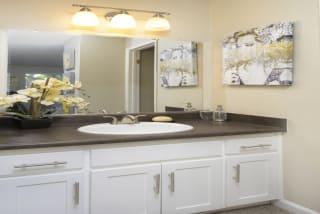 Upgraded Bathroom Fixtures at Waterleaf, Vista, 92083