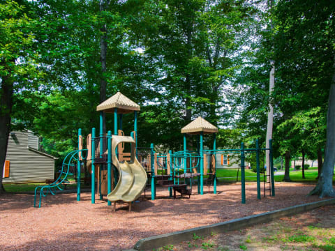 On-Site Playground on Tanbark Surrounded by Trees