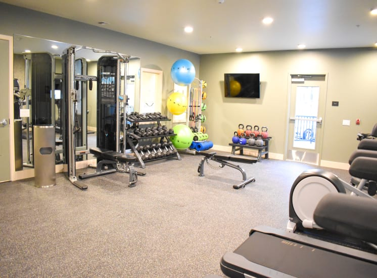 24-hr Fitness Center with Cardio and Free Weights