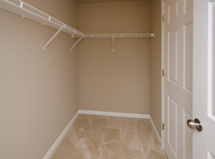 spacious closet with carpet