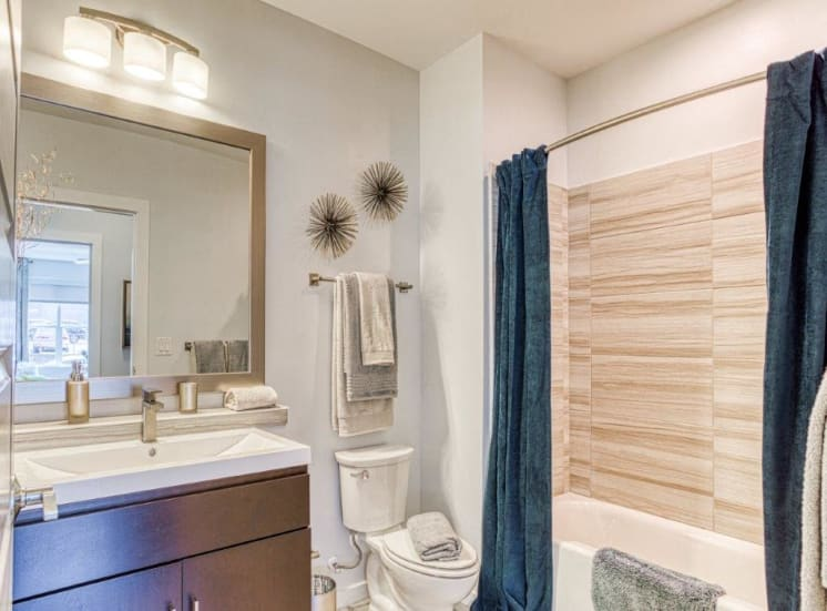Spa-Inspired Bathrooms at Carroll at Bellemeade, Greensboro, NC 27401