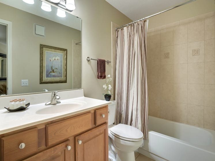 The Riverwood Apartments in Lilydale, MN Bathroom