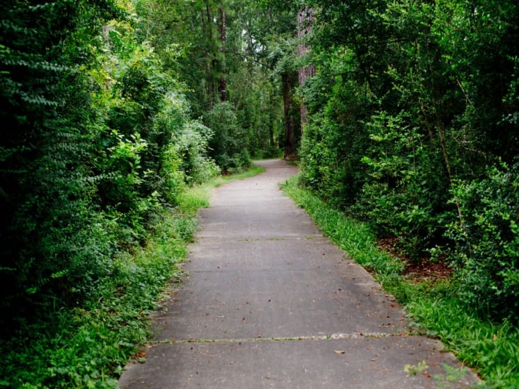 Biking and Walking Trails Picture