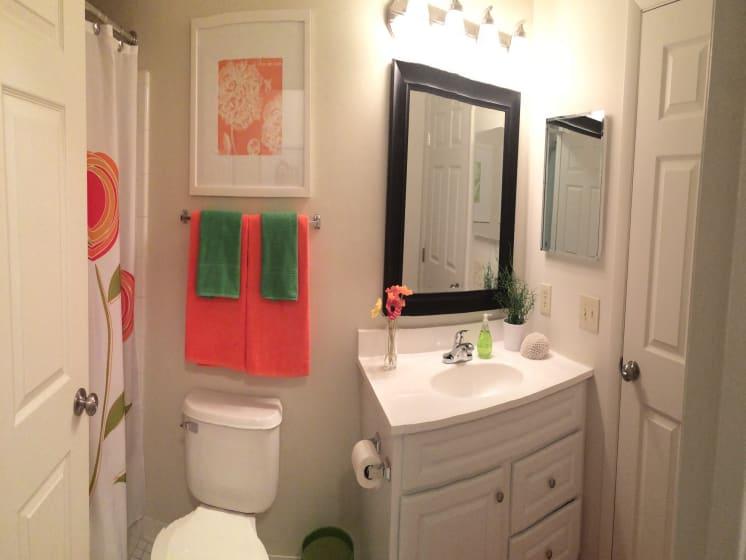 Bathroom With Storage at Fox Run, Dayton, OH
