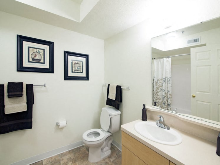 Upgraded Bathroom Fixtures at Stoney Pointe Apartment Homes, Wichita