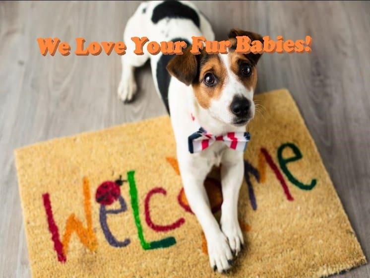 Pet-friendly Apartments, Placentia, CA, 92870