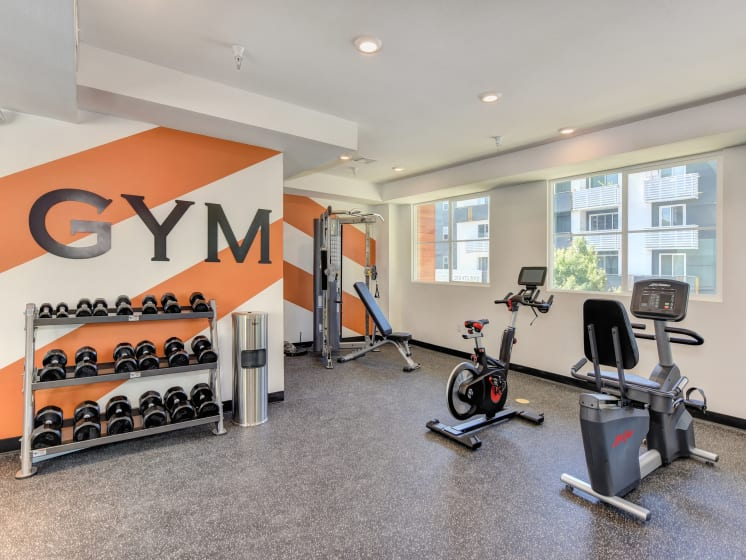 Gym with Hand Weights, Excercise Bikes and Window
