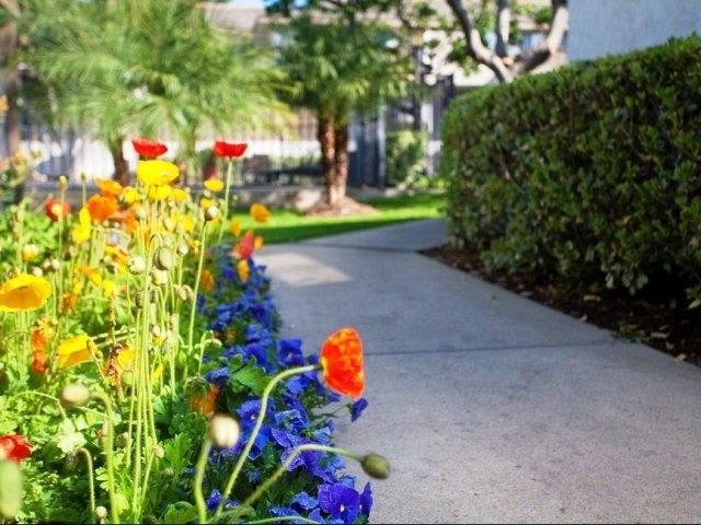 Fantastic Views at Stoneridge Apartments, Upland, CA,91786