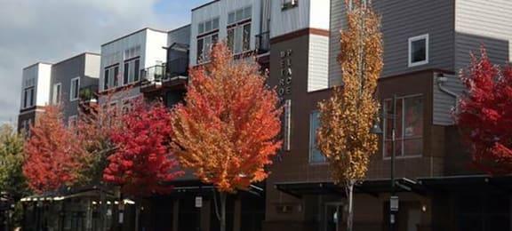 Elegant Exterior View Of Property at Metropolitan PlaceApartments, Renton, Washington