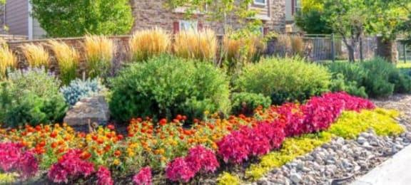 Courtyard Garden Space at Trailside Apartments, Colorado