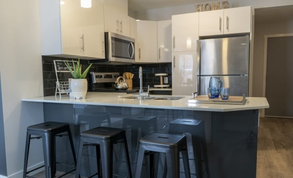 Kitchen Notre Terrace Luxury Winnipeg Apartment